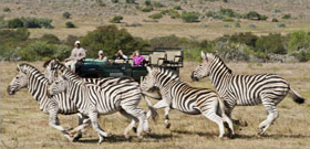 Africa Adventure Travel